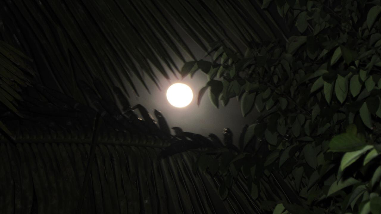 La Super lune à l'llet du Gosier