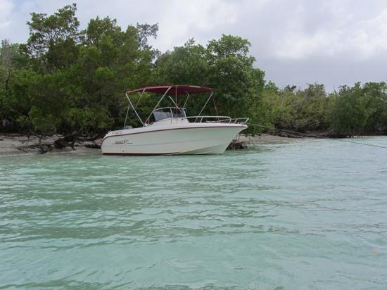 fajou-plage-et-mangrove-copier.jpg